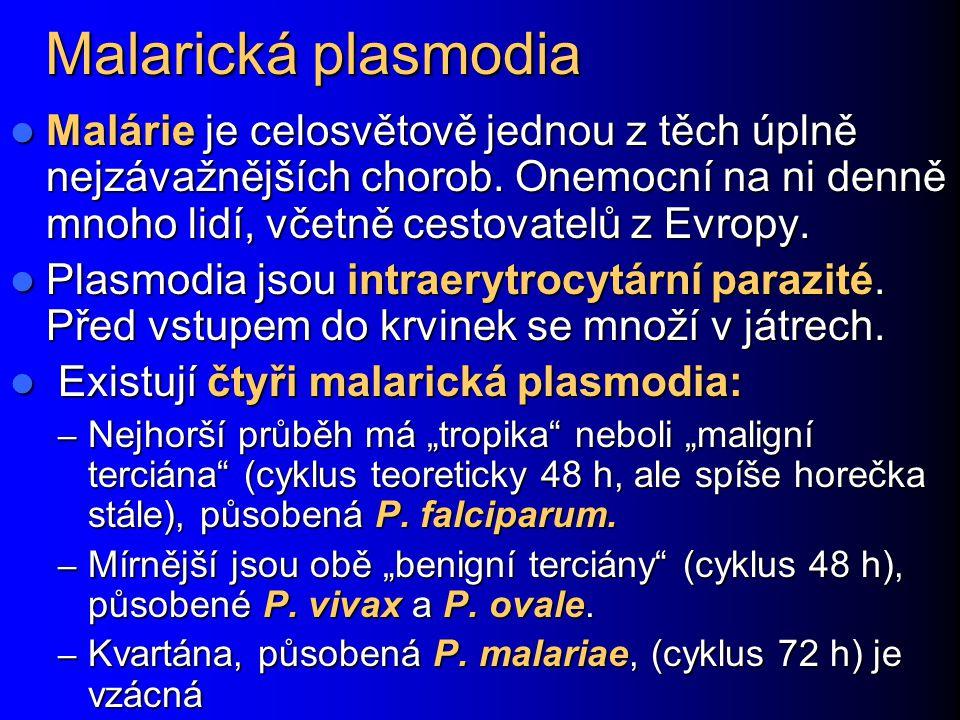Malarická plasmodia Malárie je celosvětově jednou z těch úplně nejzávažnějších chorob. Onemocní na ni denně mnoho lidí, včetně cestovatelů z Evropy. M