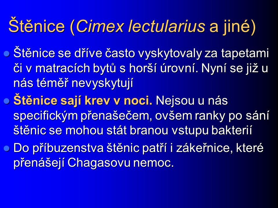 Štěnice (Cimex lectularius a jiné) Štěnice se dříve často vyskytovaly za tapetami či v matracích bytů s horší úrovní. Nyní se již u nás téměř nevyskyt