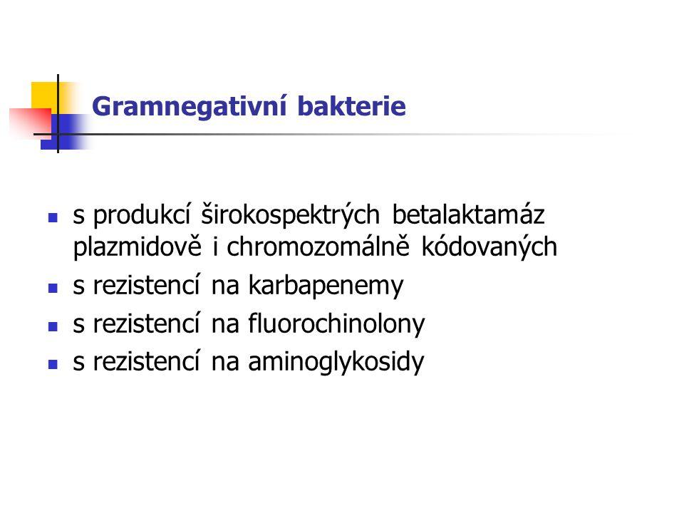 Gramnegativní bakterie s produkcí širokospektrých betalaktamáz plazmidově i chromozomálně kódovaných s rezistencí na karbapenemy s rezistencí na fluorochinolony s rezistencí na aminoglykosidy