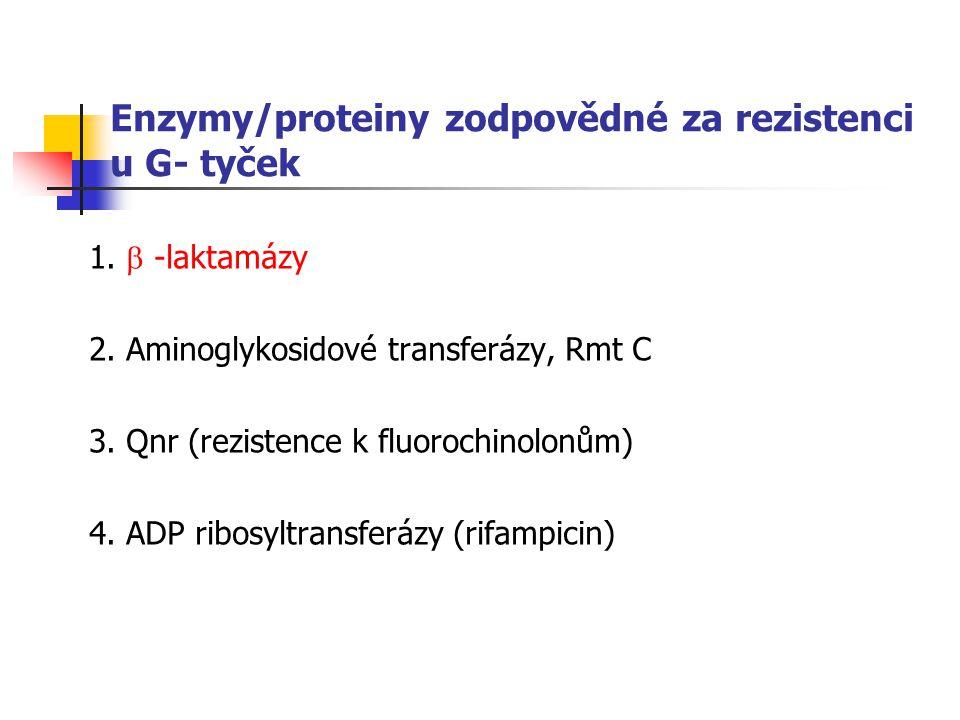 Enzymy/proteiny zodpovědné za rezistenci u G- tyček 1.