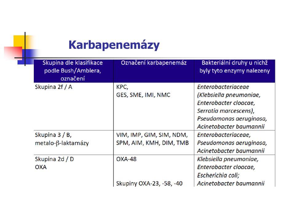 Karbapenemázy