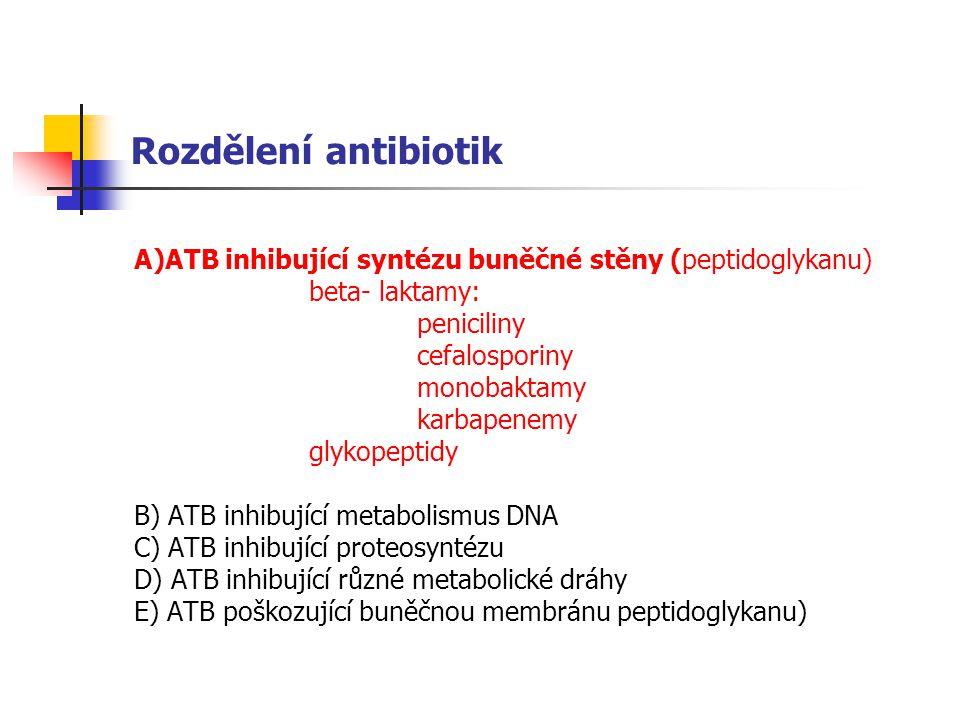 Rozdělení antibiotik A)ATB inhibující syntézu buněčné stěny (peptidoglykanu) beta- laktamy: peniciliny cefalosporiny monobaktamy karbapenemy glykopeptidy B) ATB inhibující metabolismus DNA C) ATB inhibující proteosyntézu D) ATB inhibující různé metabolické dráhy E) ATB poškozující buněčnou membránu peptidoglykanu)