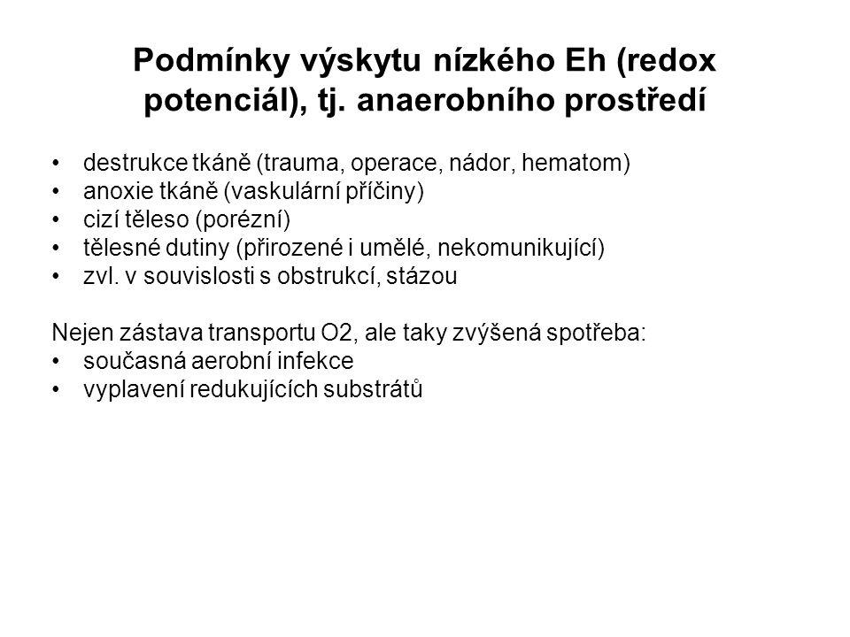 Podmínky výskytu nízkého Eh (redox potenciál), tj. anaerobního prostředí destrukce tkáně (trauma, operace, nádor, hematom) anoxie tkáně (vaskulární př