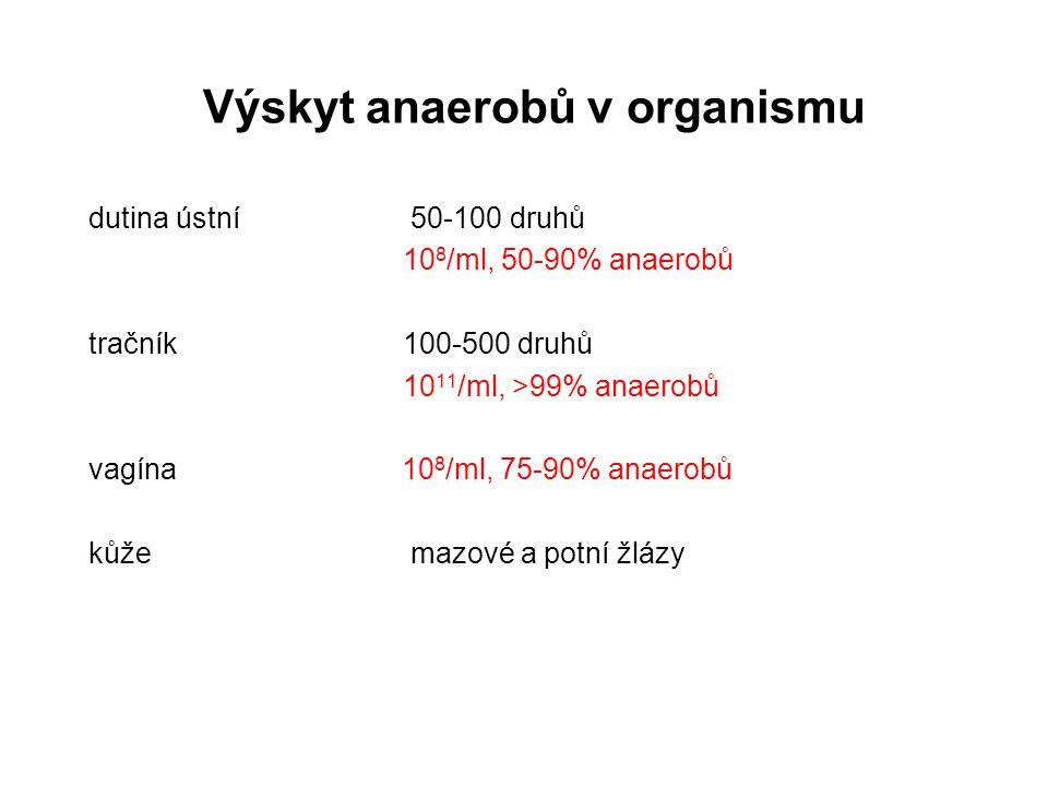 Výskyt anaerobů v organismu dutina ústní 50-100 druhů 10 8 /ml, 50-90% anaerobů tračník100-500 druhů 10 11 /ml, >99% anaerobů vagína 10 8 /ml, 75-90%