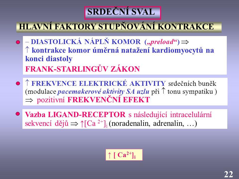 """2  DIASTOLICKÁ NÁPLŇ KOMOR (""""preload"""")   kontrakce komor úměrná natažení kardiomyocytů na konci diastoly FRANK-STARLINGŮV ZÁKON Vazba LIGAND-RECEPT"""