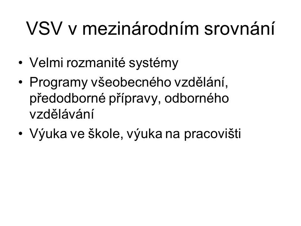 VSV v mezinárodním srovnání Velmi rozmanité systémy Programy všeobecného vzdělání, předodborné přípravy, odborného vzdělávání Výuka ve škole, výuka na