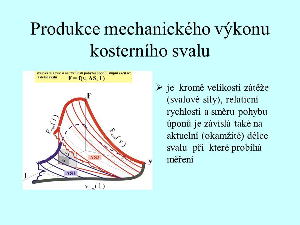 Produkce mechanického výkonu kosterního svalu  je kromě velikosti zátěže (svalové síly), relaticní rychlosti a směru pohybu úponů je závislá také na