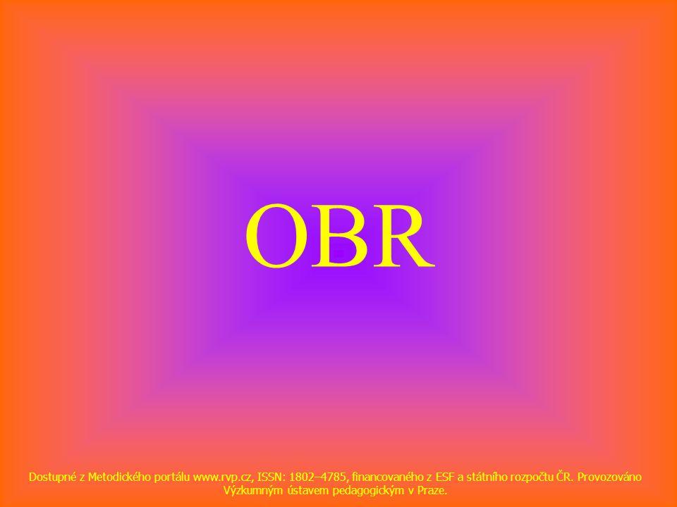 OBR Dostupné z Metodického portálu www.rvp.cz, ISSN: 1802–4785, financovaného z ESF a státního rozpočtu ČR.