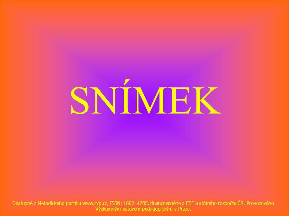 SNÍMEK Dostupné z Metodického portálu www.rvp.cz, ISSN: 1802–4785, financovaného z ESF a státního rozpočtu ČR.