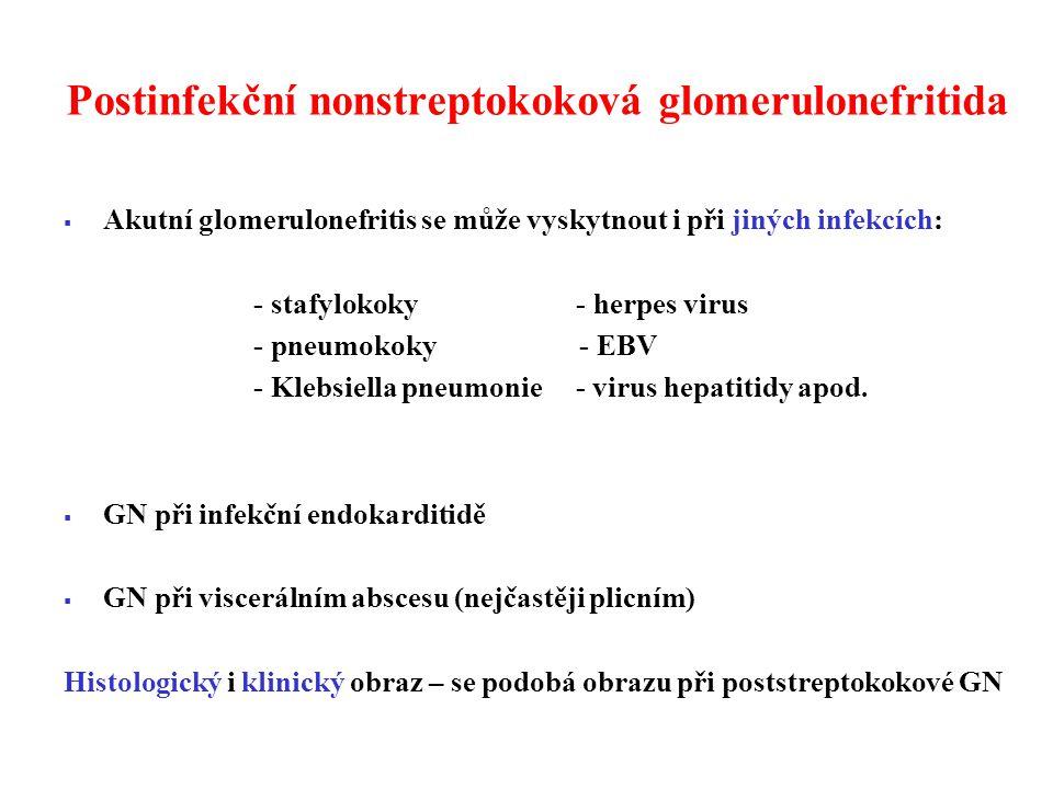 Postinfekční nonstreptokoková glomerulonefritida  Akutní glomerulonefritis se může vyskytnout i při jiných infekcích: - stafylokoky - herpes virus - pneumokoky - EBV - Klebsiella pneumonie - virus hepatitidy apod.