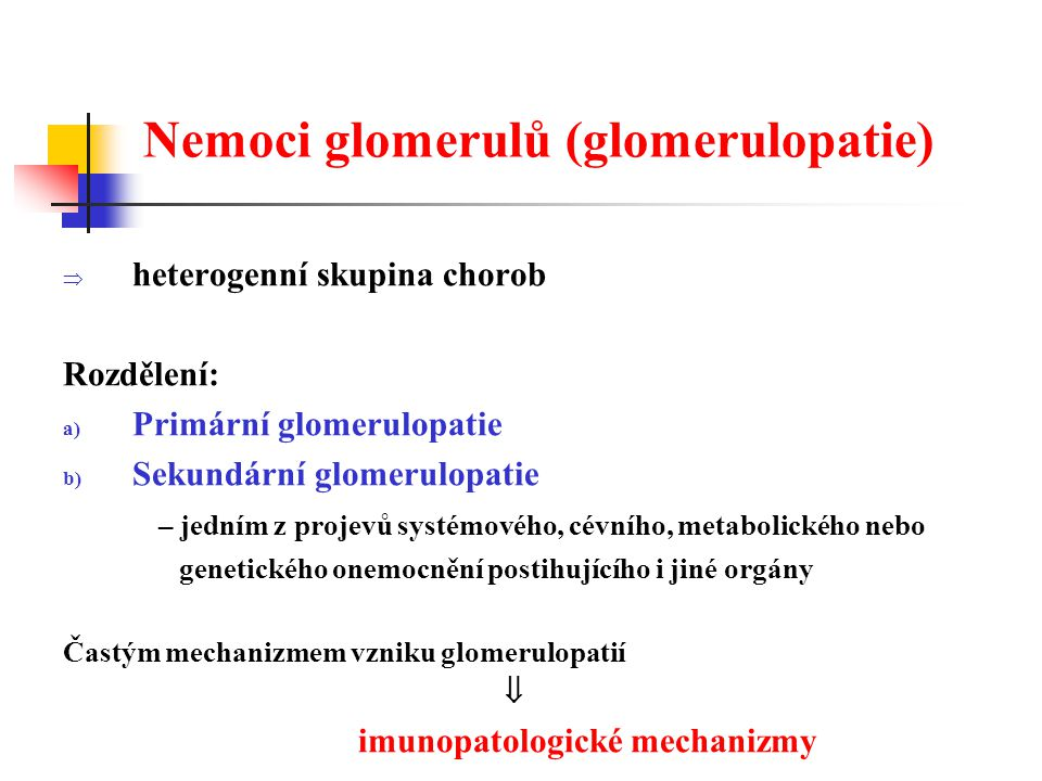 Hlavní mechanizmy glomerulárního poškození U neproliferativních glomerulopatií:  poškození autoprotilátkou  poškození zprostředkované komplementem U proliferativních glomerulopatií:  poškození cirkulujícími zánětlivými buňkami (zejména neutrofily a makrofágy)  poškození lokálně aktivovanými rezidentními (např.
