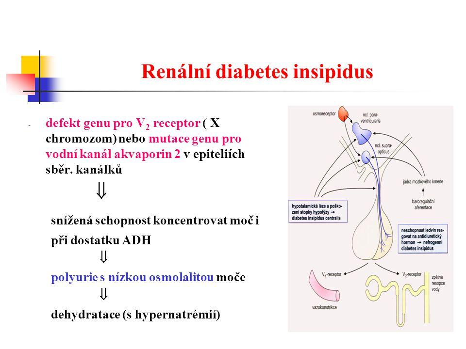 Renální diabetes insipidus - defekt genu pro V 2 receptor ( X chromozom) nebo mutace genu pro vodní kanál akvaporin 2 v epiteliích sběr.