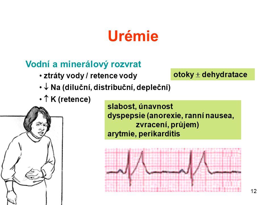 12 Urémie otoky  dehydratace slabost, únavnost dyspepsie (anorexie, ranní nausea, zvracení, průjem) arytmie, perikarditis Vodní a minerálový rozvrat