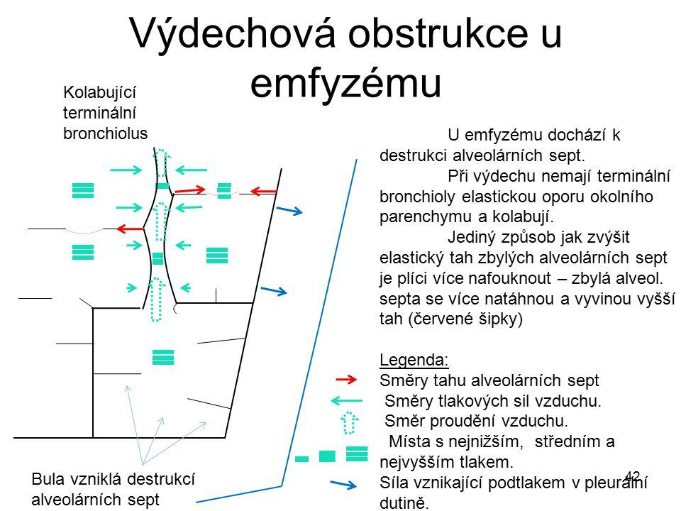 42 Výdechová obstrukce u emfyzému Bula vzniklá destrukcí alveolárních sept Kolabující terminální bronchiolus U emfyzému dochází k destrukci alveolární