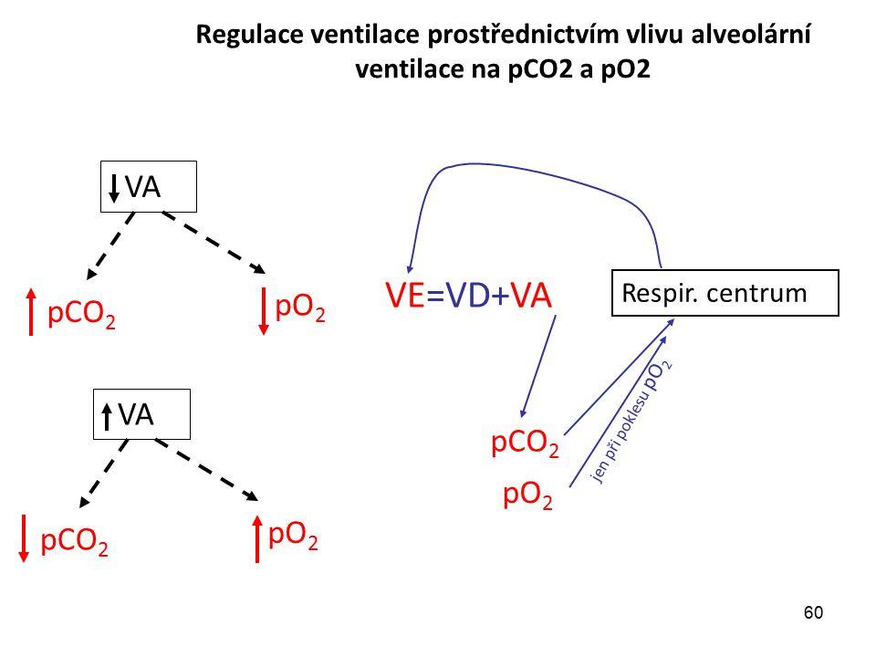 60 VA pCO 2 pO 2 pCO 2 pO 2 VE=VD+VA pCO 2 Respir. centrum pO 2 Regulace ventilace prostřednictvím vlivu alveolární ventilace na pCO2 a pO2 VA jen při
