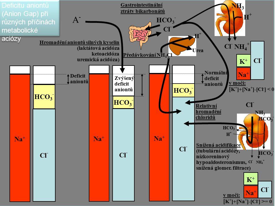 67 Na + Cl - HCO 3 - Na + Cl - HCO 3 - Na + Cl - Deficit aniontů HCO 3 - Hromadění aniontů silných kyselin (laktátová acidóza ketoacidóza uremická aci