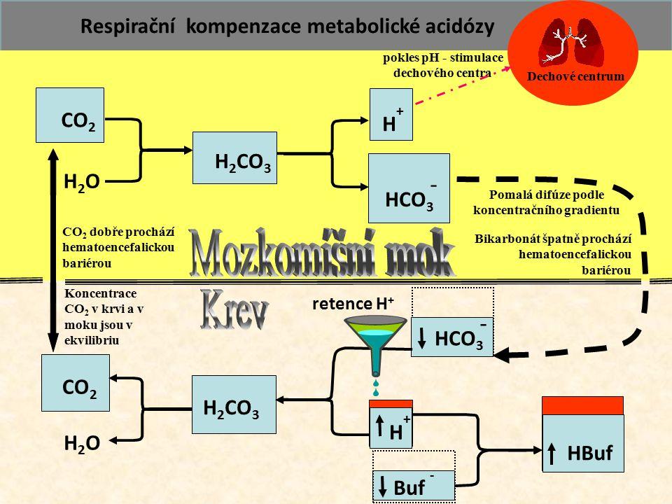 71 CO 2 H2OH2O H 2 CO 3 Buf - HBuf CO 2 H2OH2O H 2 CO 3 HCO 3 - H+H+ Pomalá difúze podle koncentračního gradientu Respirační kompenzace metabolické ac