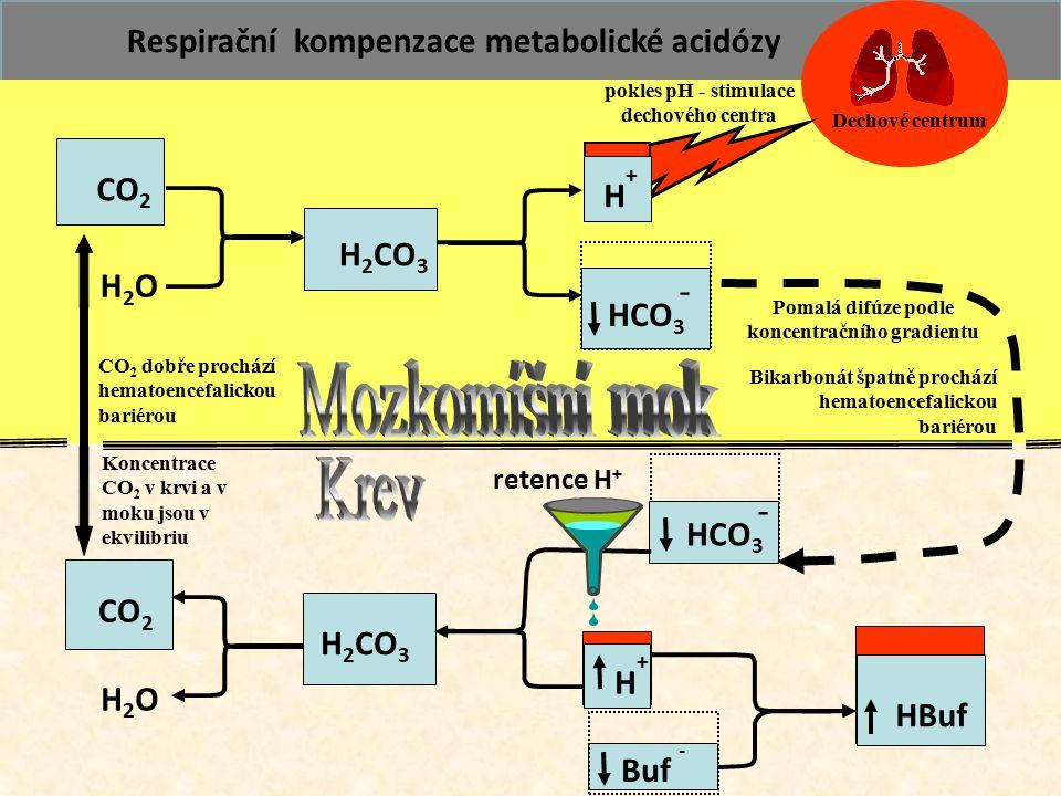 72 CO 2 H2OH2O H 2 CO 3 HCO 3 - Buf - HBuf CO 2 H2OH2O H 2 CO 3 HCO 3 - H+H+ Pomalá difúze podle koncentračního gradientu Koncentrace CO 2 v krvi a v