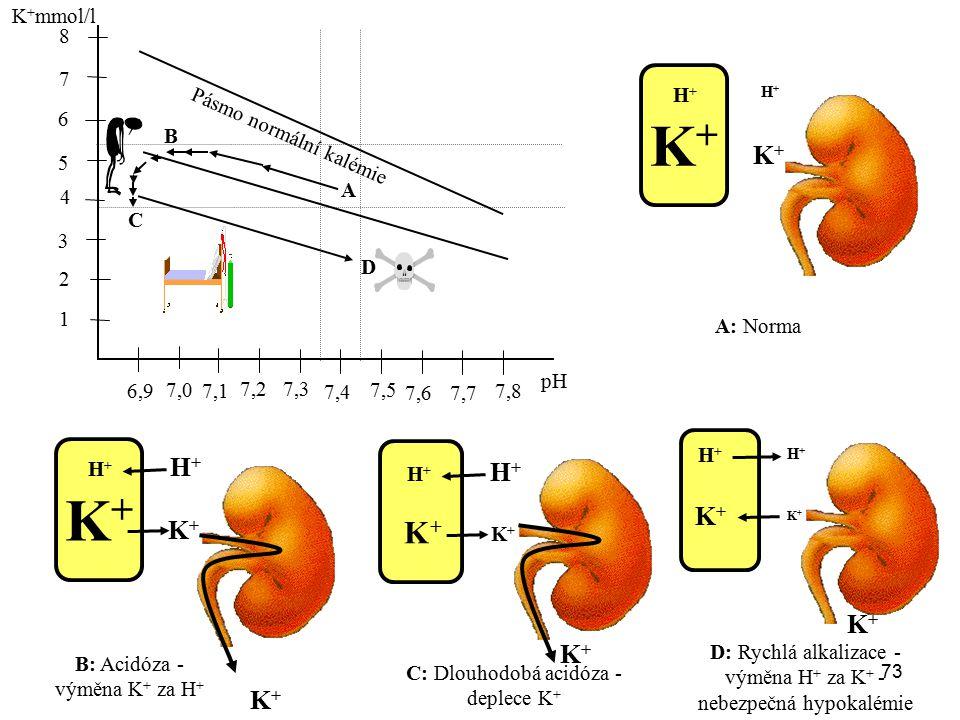 73 1 K + mmol/l 6,9 2 3 4 5 6 7 8 7,0 7,1 7,2 7,3 7,4 7,5 7,6 7,7 7,8 pH Pásmo normální kalémie A K+K+ H+H+ H+H+ K+K+ A: Norma B K+K+ H+H+ H+H+ K+K+ B