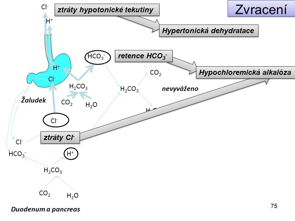 75 CO 2 H2OH2O H 2 CO 3 HCO 3 - H+H+ Cl - Žaludek Duodenum a pancreas CO 2 H2OH2O H 2 CO 3 HCO 3 - H+H+ Cl - H 2 CO 3 CO 2 H2OH2O Cl - H+H+ retence HC