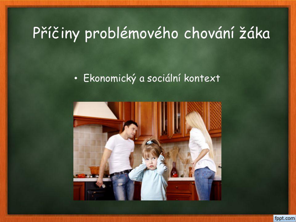 Příčiny problémového chování žáka Ekonomický a sociální kontext