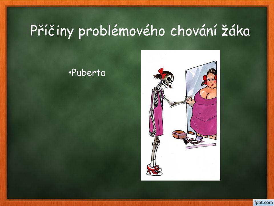 Příčiny problémového chování žáka Puberta