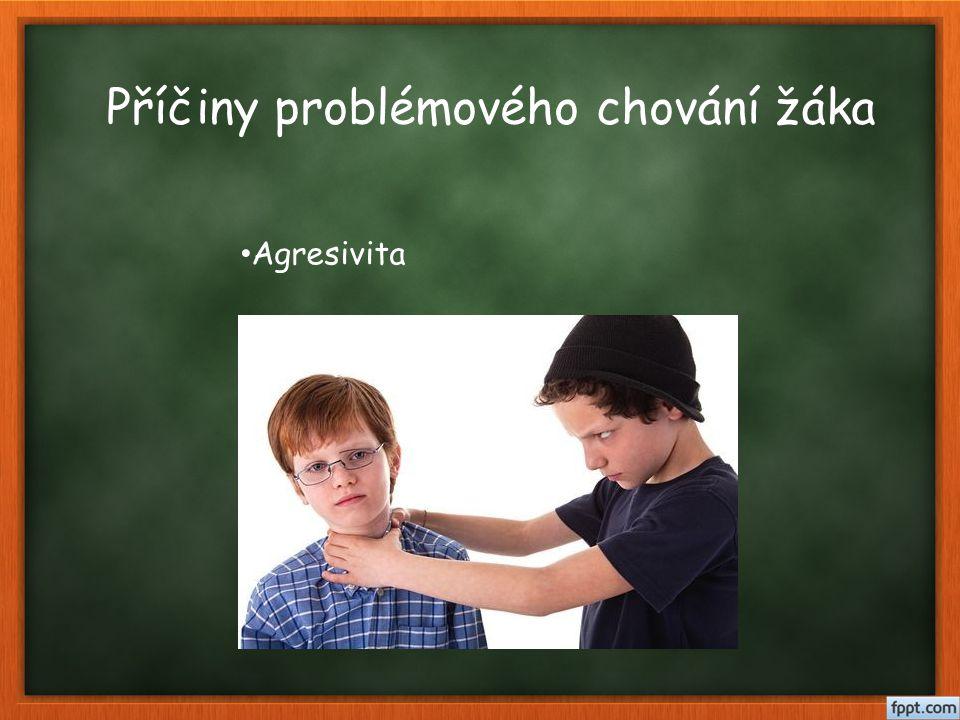 Příčiny problémového chování žáka Agresivita