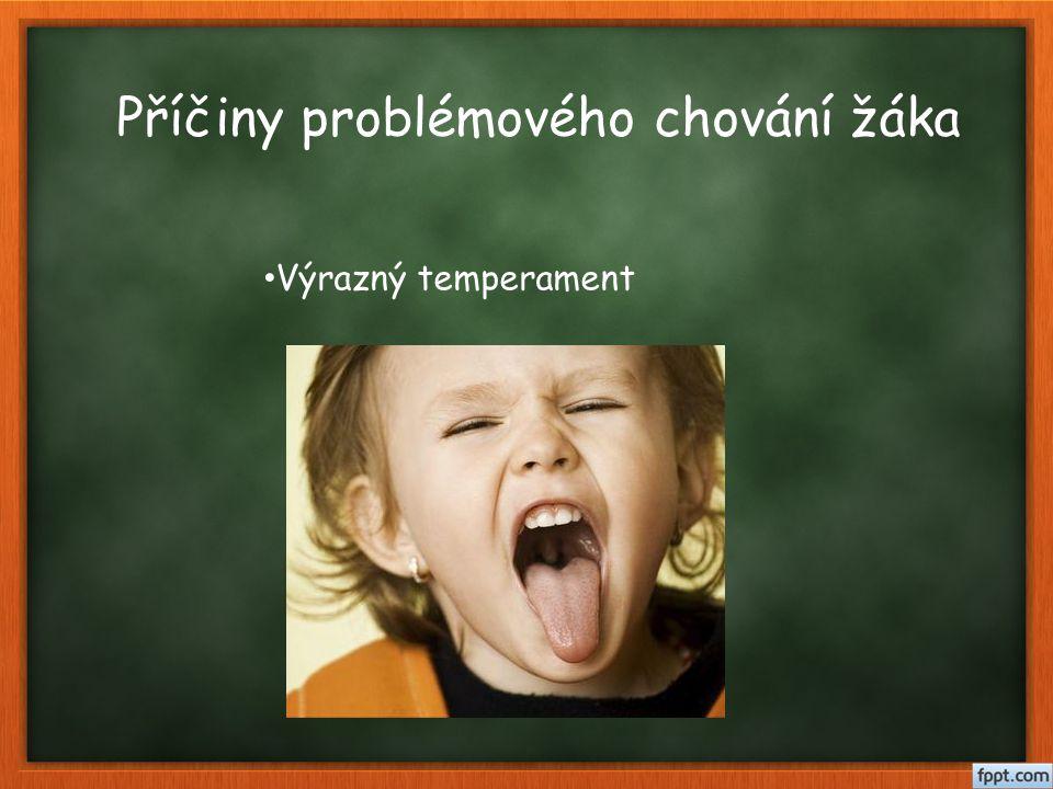Příčiny problémového chování žáka Poruchy chování