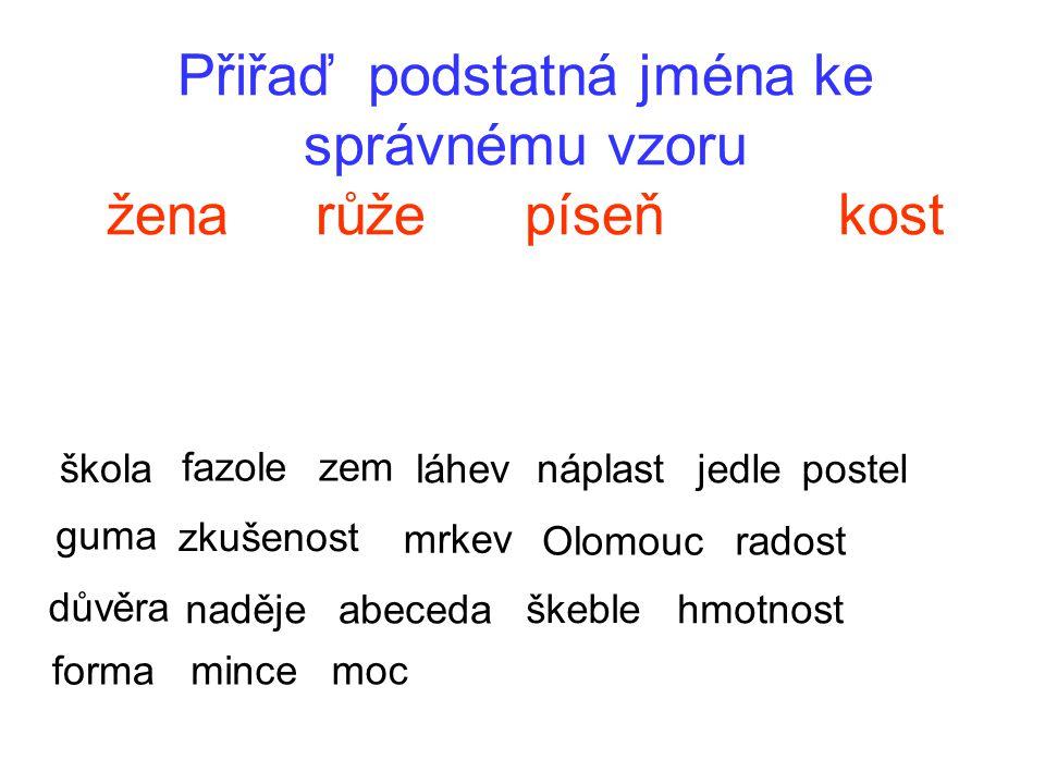 Přiřaď podstatná jména ke správnému vzoru žena růže píseň kost škola fazolezem láhev náplast jedlepostel guma zkušenost mrkev Olomouc radost důvěra na