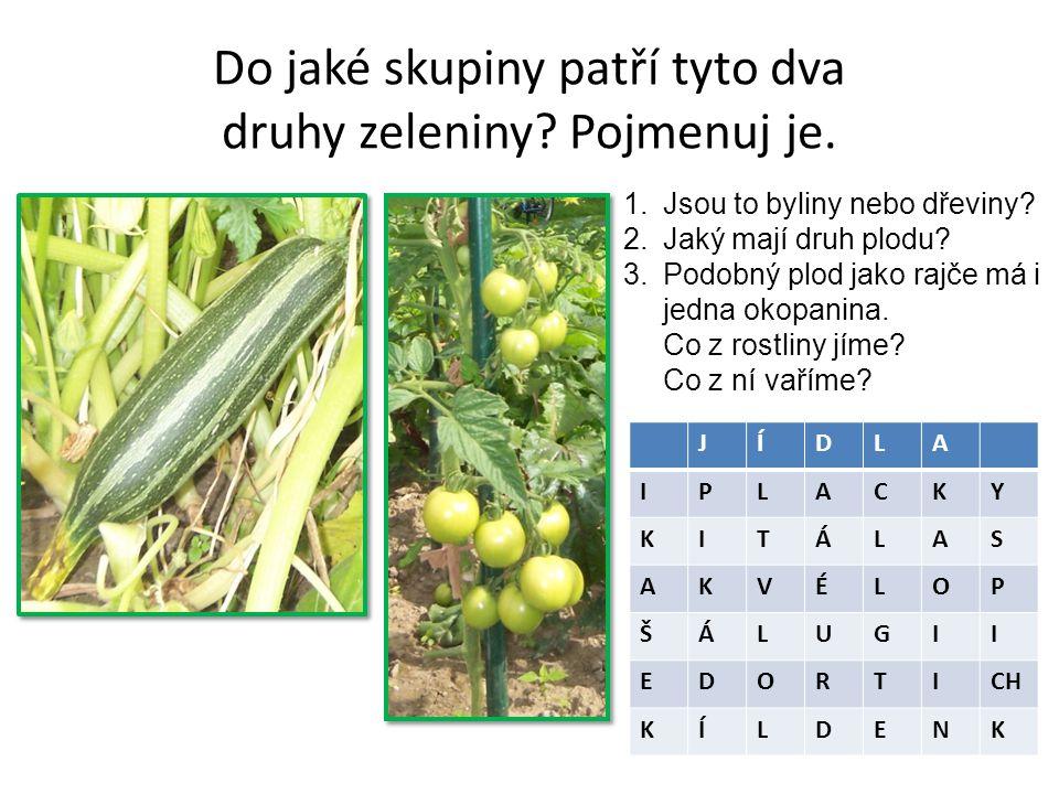 Do jaké skupiny patří tyto dva druhy zeleniny. Pojmenuj je.