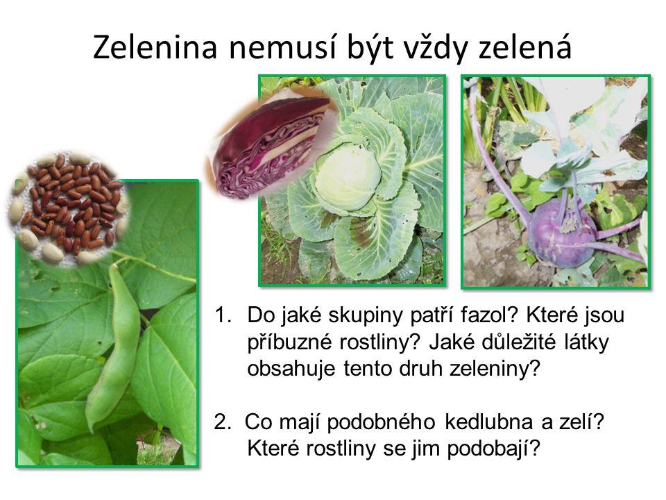 Zelenina nemusí být vždy zelená 1.Do jaké skupiny patří fazol.