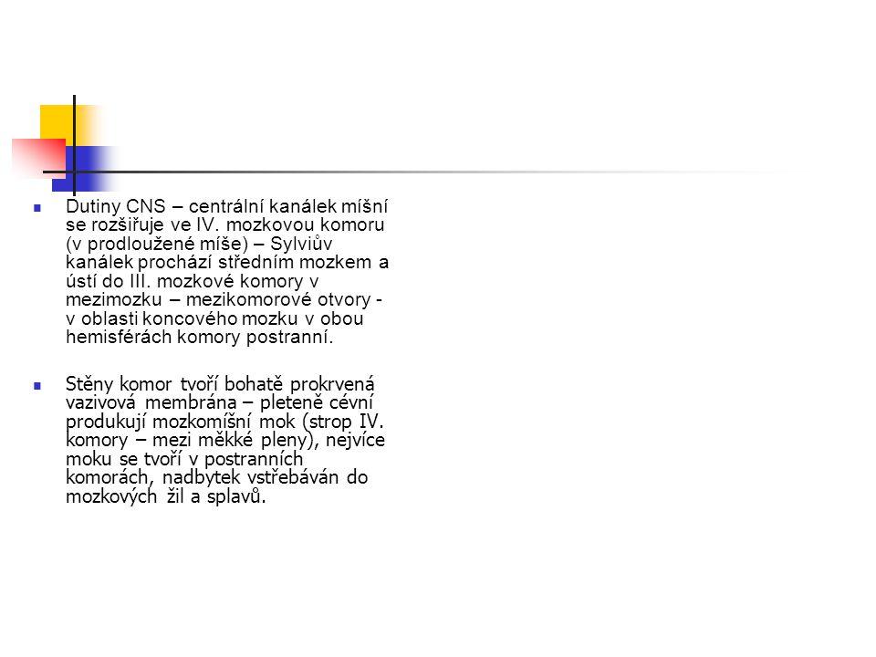 Dutiny CNS – centrální kanálek míšní se rozšiřuje ve IV. mozkovou komoru (v prodloužené míše) – Sylviův kanálek prochází středním mozkem a ústí do III