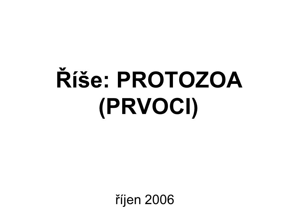Říše: PROTOZOA (PRVOCI) říjen 2006