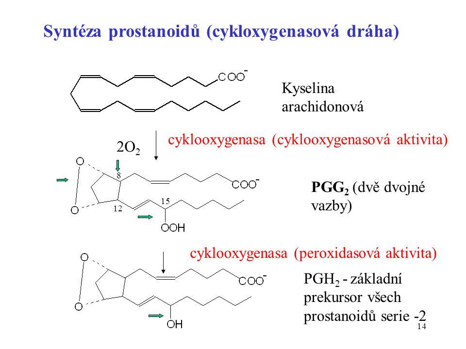 14 Syntéza prostanoidů (cykloxygenasová dráha) Kyselina arachidonová PGG 2 (dvě dvojné vazby) PGH 2 - základní prekursor všech prostanoidů serie -2 cy