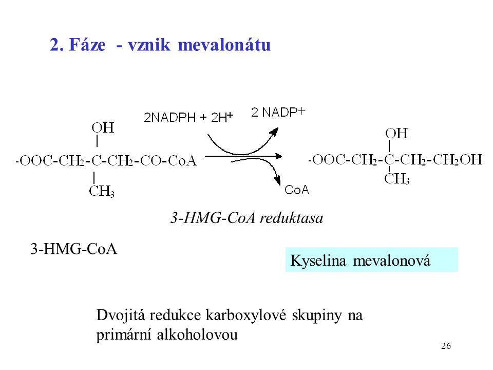 26 3-HMG-CoA Kyselina mevalonová 2. Fáze - vznik mevalonátu 3-HMG-CoA reduktasa + Dvojitá redukce karboxylové skupiny na primární alkoholovou