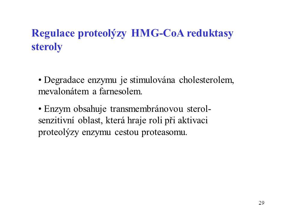 29 Regulace proteolýzy HMG-CoA reduktasy steroly Degradace enzymu je stimulována cholesterolem, mevalonátem a farnesolem. Enzym obsahuje transmembráno