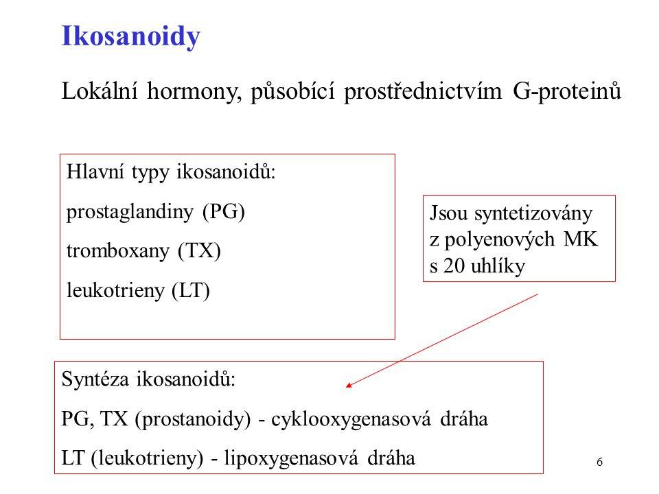6 Ikosanoidy Lokální hormony, působící prostřednictvím G-proteinů Syntéza ikosanoidů: PG, TX (prostanoidy) - cyklooxygenasová dráha LT (leukotrieny) -