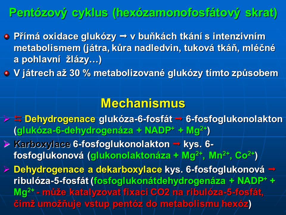 Pentózový cyklus (hexózamonofosfátový skrat) Přímá oxidace glukózy  v buňkách tkání s intenzivním metabolismem (játra, kůra nadledvin, tuková tkáň, mléčné a pohlavní žlázy…) V játrech až 30 % metabolizované glukózy tímto způsobem Mechanismus   Dehydrogenace glukóza-6-fosfát  6-fosfoglukonolakton (glukóza-6-dehydrogenáza + NADP + + Mg 2+ )  Karboxylace 6-fosfoglukonolakton  kys.