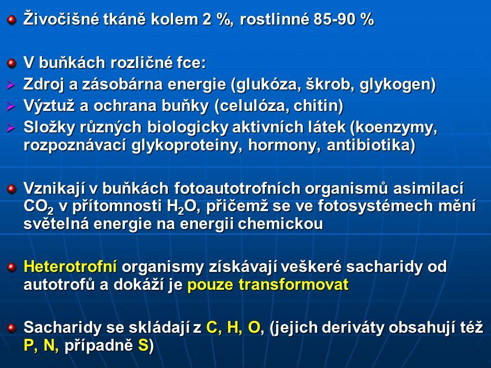 Živočišné tkáně kolem 2 %, rostlinné 85-90 % V buňkách rozličné fce:  Zdroj a zásobárna energie (glukóza, škrob, glykogen)  Výztuž a ochrana buňky (celulóza, chitin)  Složky různých biologicky aktivních látek (koenzymy, rozpoznávací glykoproteiny, hormony, antibiotika) Vznikají v buňkách fotoautotrofních organismů asimilací CO 2 v přítomnosti H 2 O, přičemž se ve fotosystémech mění světelná energie na energii chemickou Heterotrofní organismy získávají veškeré sacharidy od autotrofů a dokáží je pouze transformovat Sacharidy se skládají z C, H, O, (jejich deriváty obsahují též P, N, případně S)