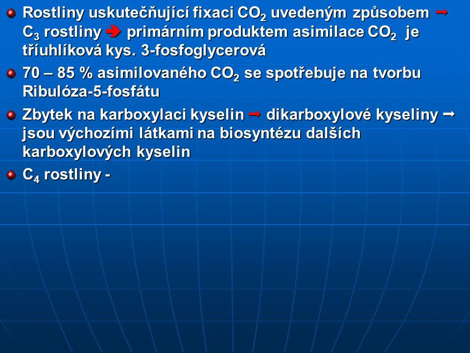Rostliny uskutečňující fixaci CO 2 uvedeným způsobem  C 3 rostliny  primárním produktem asimilace CO 2 je tříuhlíková kys.