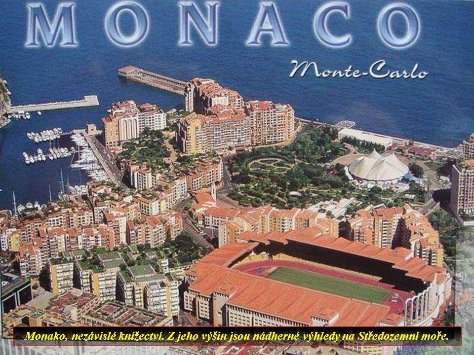Niza es el mayor balneario de la costa mediterranea y es la quinta mayor ciudad de Francia.