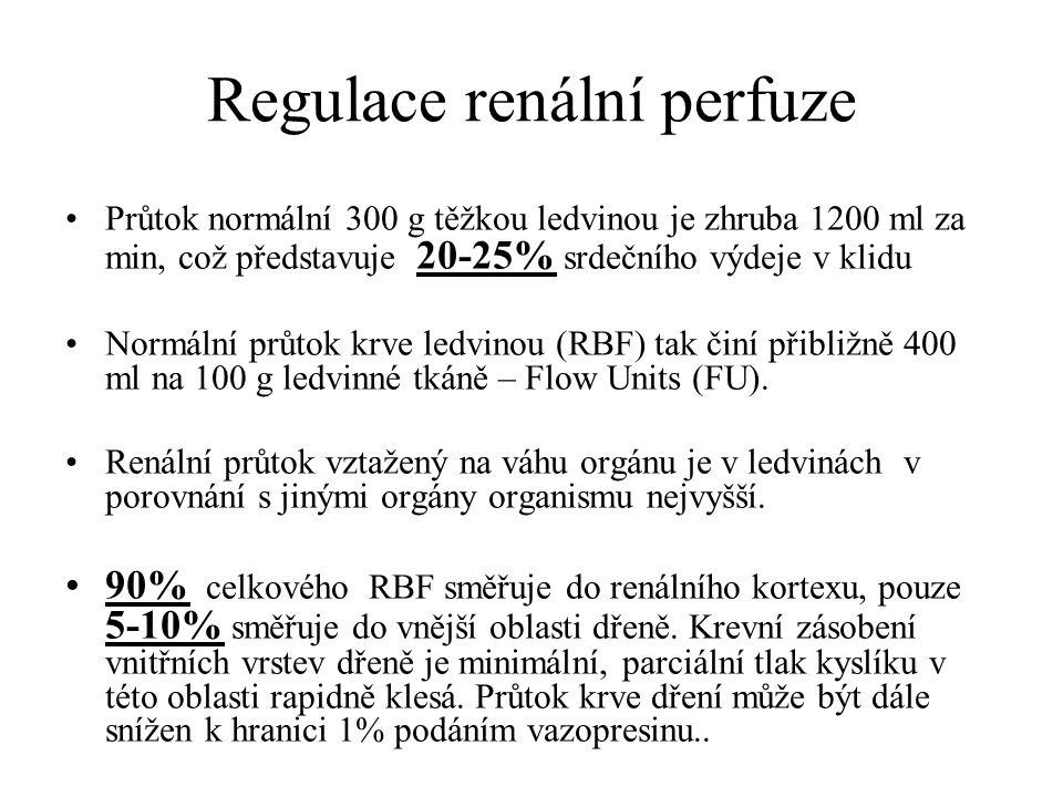 Regulace renální perfuze Průtok normální 300 g těžkou ledvinou je zhruba 1200 ml za min, což představuje 20-25% srdečního výdeje v klidu Normální průt