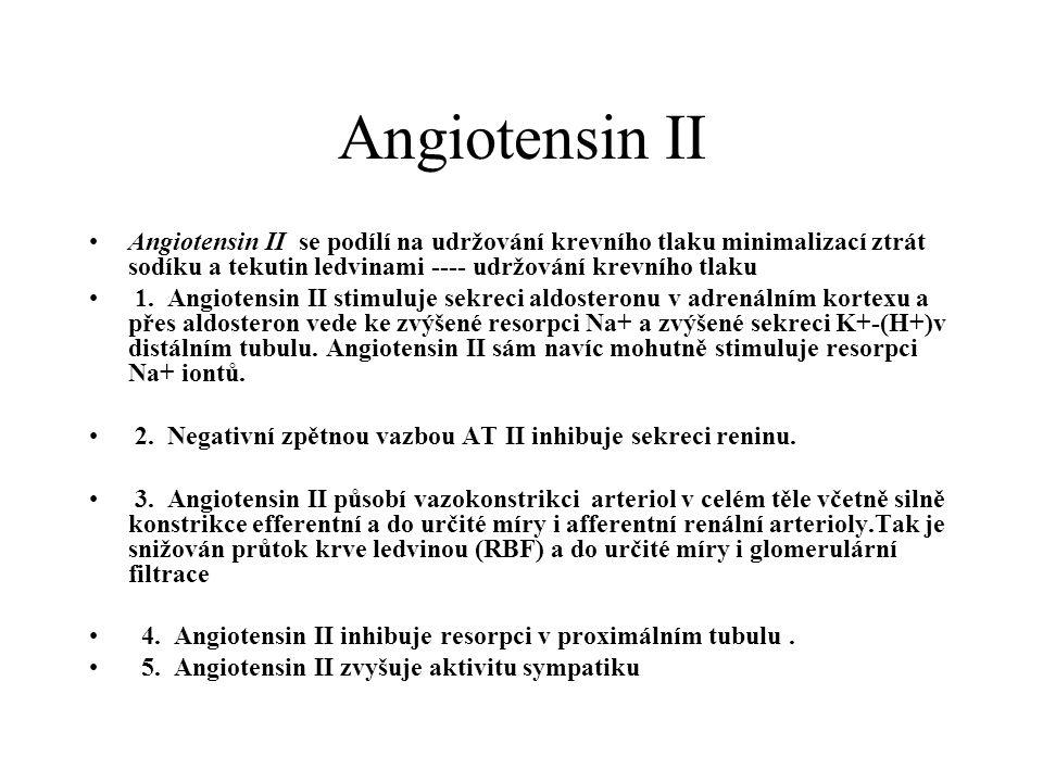Angiotensin II Angiotensin II se podílí na udržování krevního tlaku minimalizací ztrát sodíku a tekutin ledvinami ---- udržování krevního tlaku 1. Ang