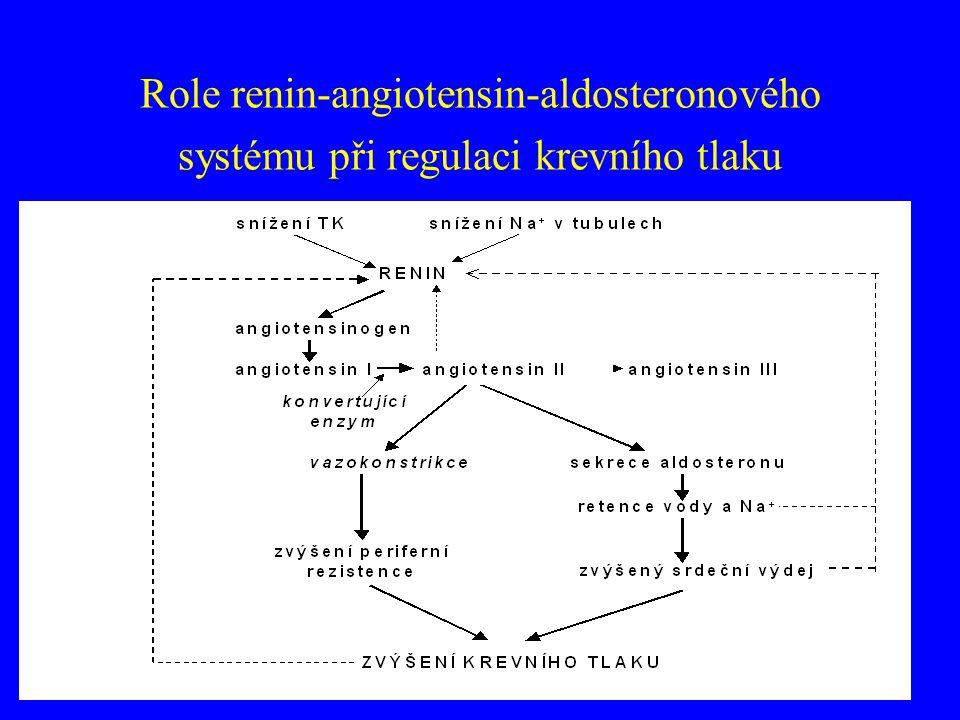 Role renin-angiotensin-aldosteronového systému při regulaci krevního tlaku