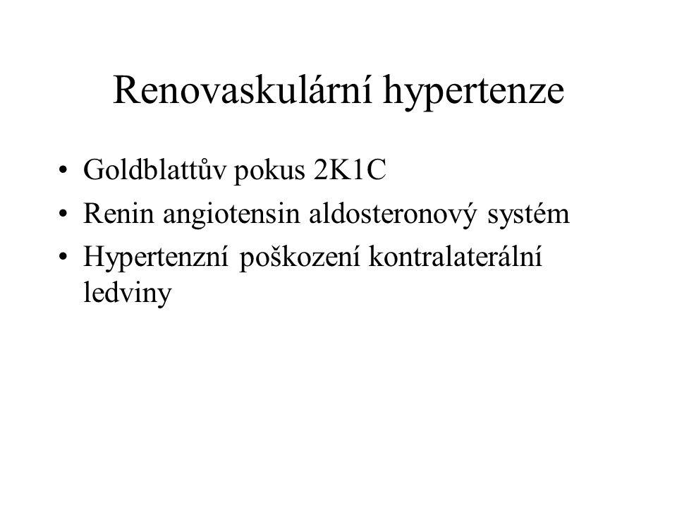Renovaskulární hypertenze Goldblattův pokus 2K1C Renin angiotensin aldosteronový systém Hypertenzní poškození kontralaterální ledviny