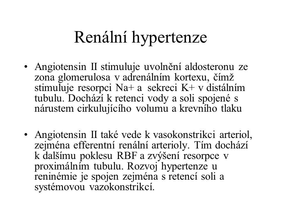 Renální hypertenze Angiotensin II stimuluje uvolnění aldosteronu ze zona glomerulosa v adrenálním kortexu, čímž stimuluje resorpci Na+ a sekreci K+ v