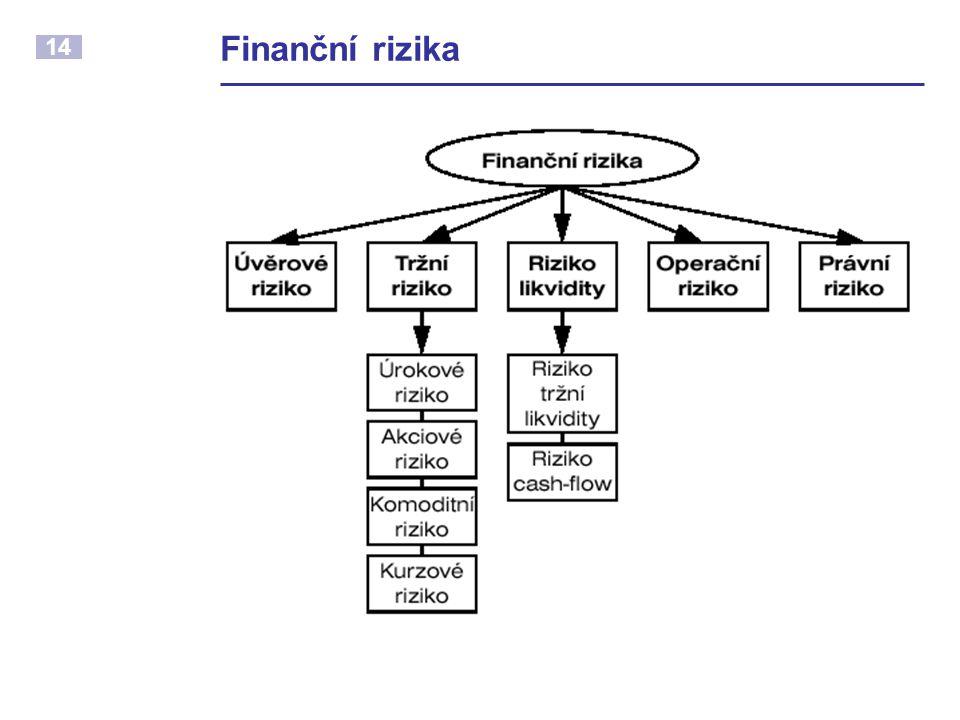 14 Finanční rizika