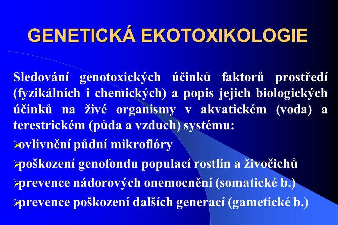 GENETICKÁ EKOTOXIKOLOGIE Sledování genotoxických účinků faktorů prostředí (fyzikálních i chemických) a popis jejich biologických účinků na živé organismy v akvatickém (voda) a terestrickém (půda a vzduch) systému:  ovlivnění půdní mikroflóry  poškození genofondu populací rostlin a živočichů  prevence nádorových onemocnění (somatické b.)  prevence poškození dalších generací (gametické b.)