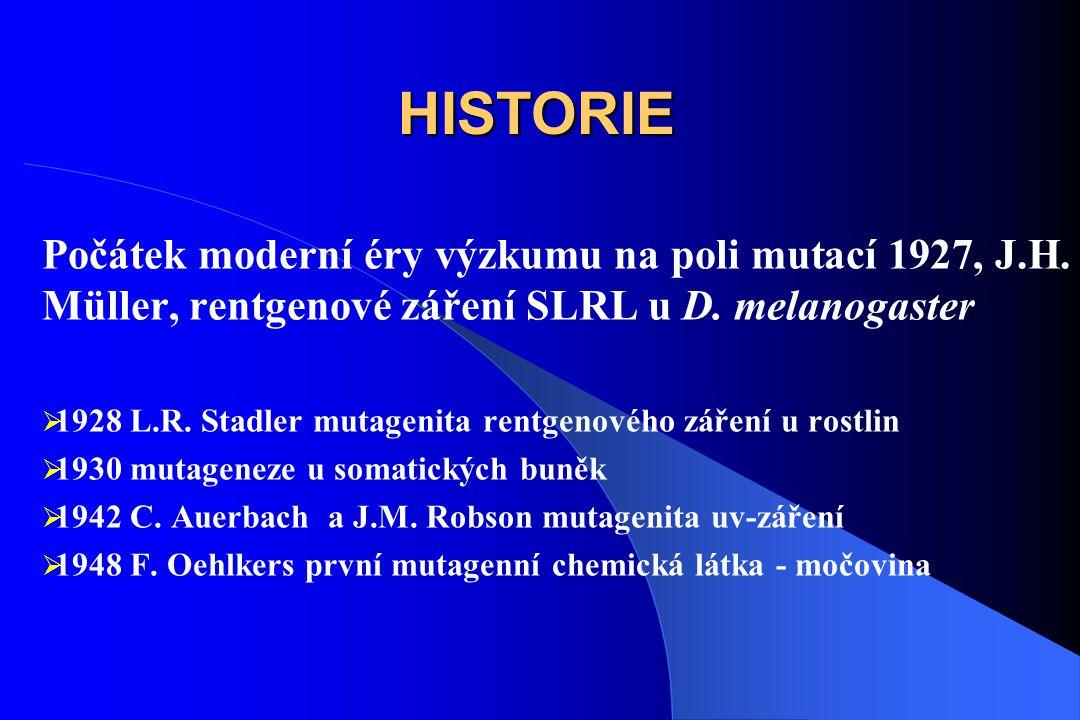 HISTORIE Počátek moderní éry výzkumu na poli mutací 1927, J.H.