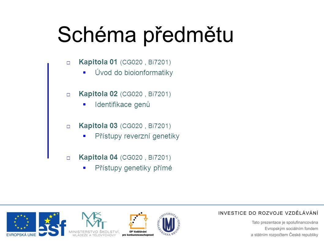 Schéma předmětu  Kapitola 05 (CG020, Bi7201)  Přístupy funkční genomiky  Kapitola 06 (CG020, Bi7201)  Protein-protein interakce a jejich analýza  Kapitola 07 (CG020)  Moderní postupy funkční genomiky  Kapitola 08 (CG020)  Strukturní genomika